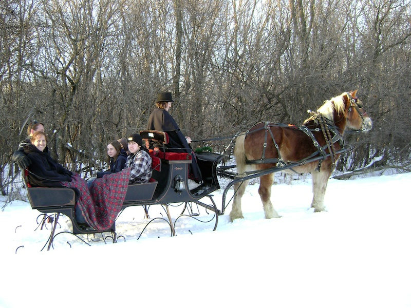 Enjoy a sleigh ride at Forest View Farms