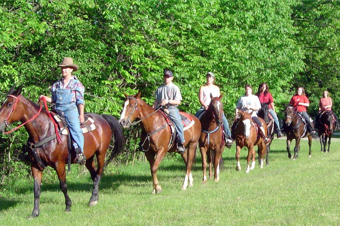 Pony Rides, Trail Rides, Horseback Riding Lessons, and Horse